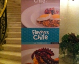 Flavour of Chile, Turkey 2013