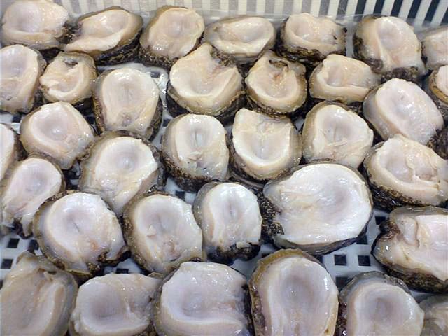 Tierra Austral Frozen Locos Meat Concholepas
